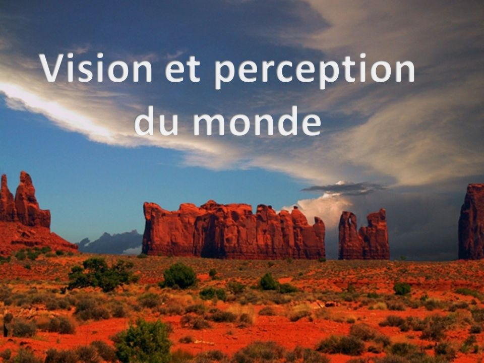 Vision et perception du monde
