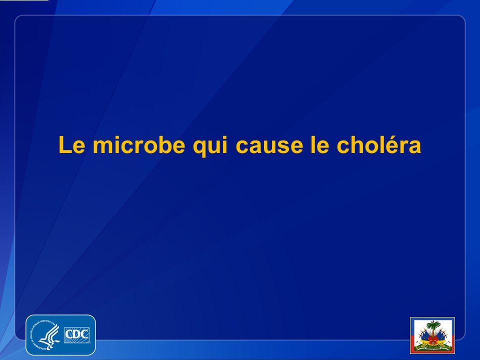 Le microbe qui cause le choléra