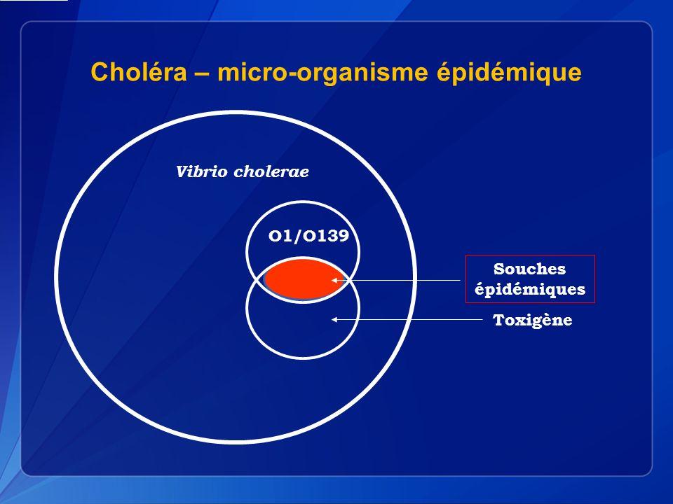Choléra – micro-organisme épidémique