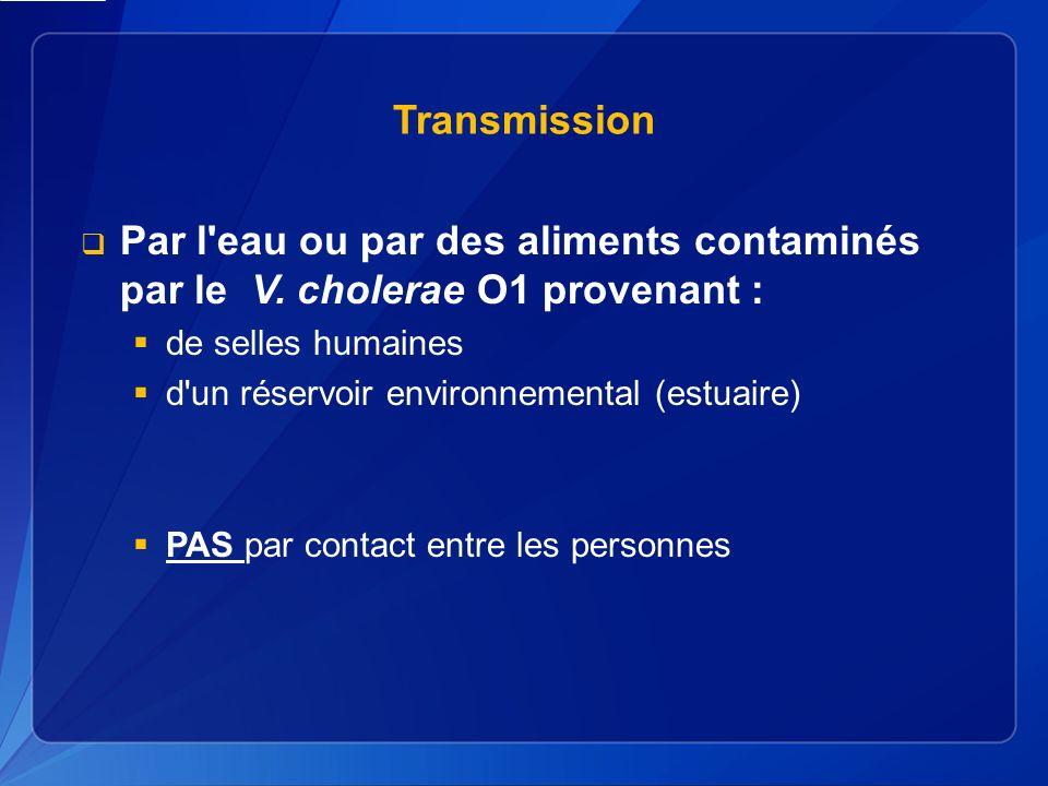 Transmission Par l eau ou par des aliments contaminés par le V. cholerae O1 provenant : de selles humaines.