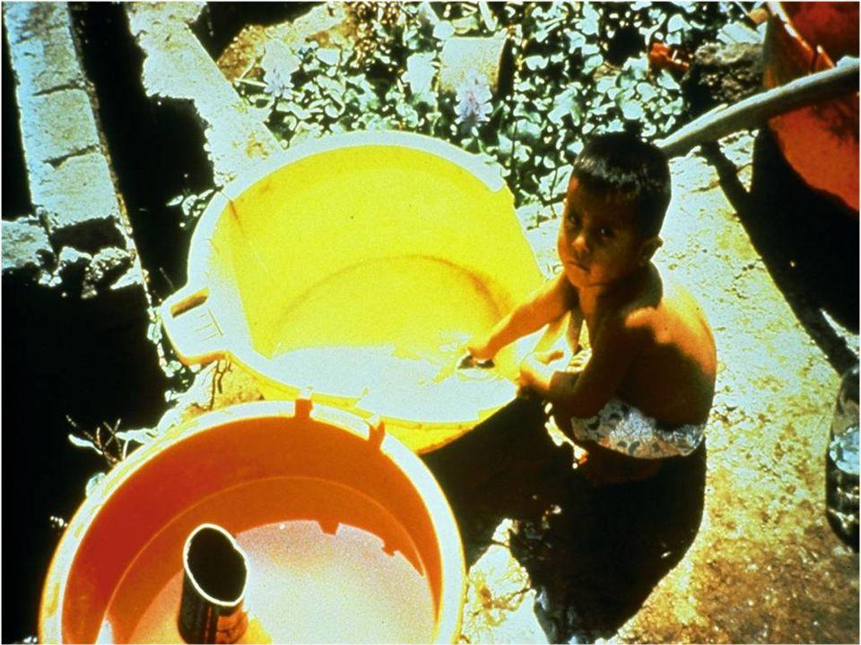 Une fois rapportée à la maison, l'eau est habituellement conservée dans un conteneur.