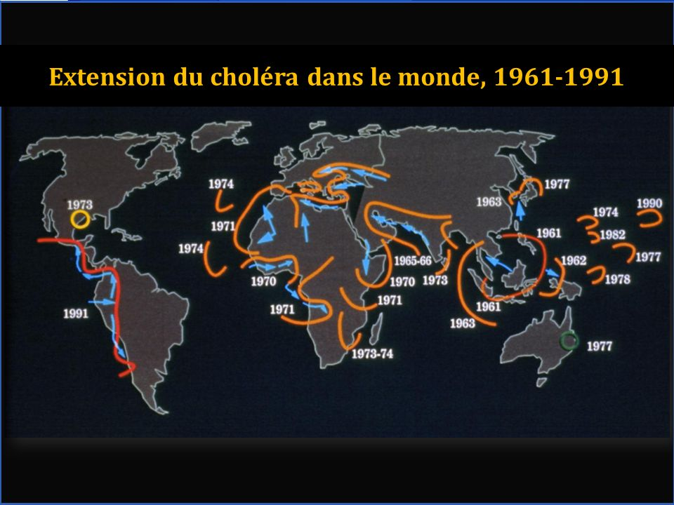 Extension du choléra dans le monde, 1961-1991