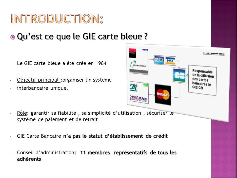 Introduction: Qu'est ce que le GIE carte bleue