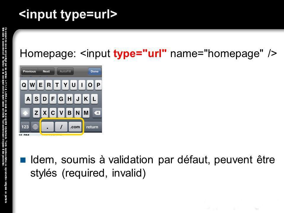 <input type=url>