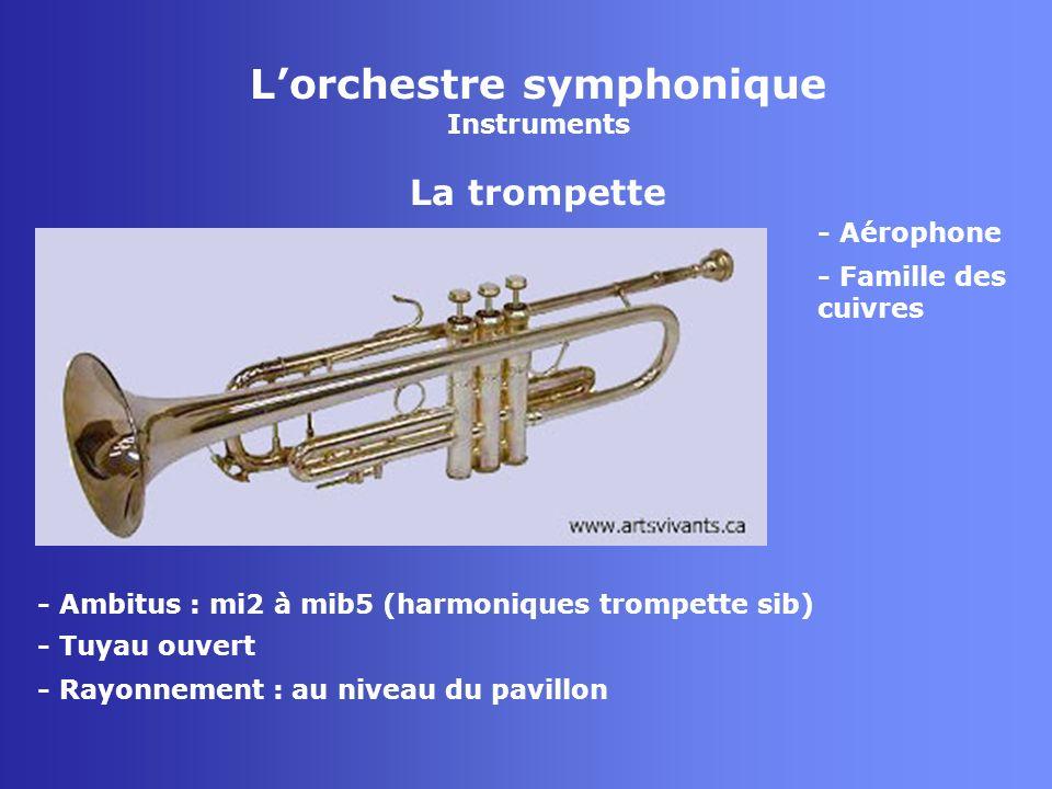 L'orchestre symphonique