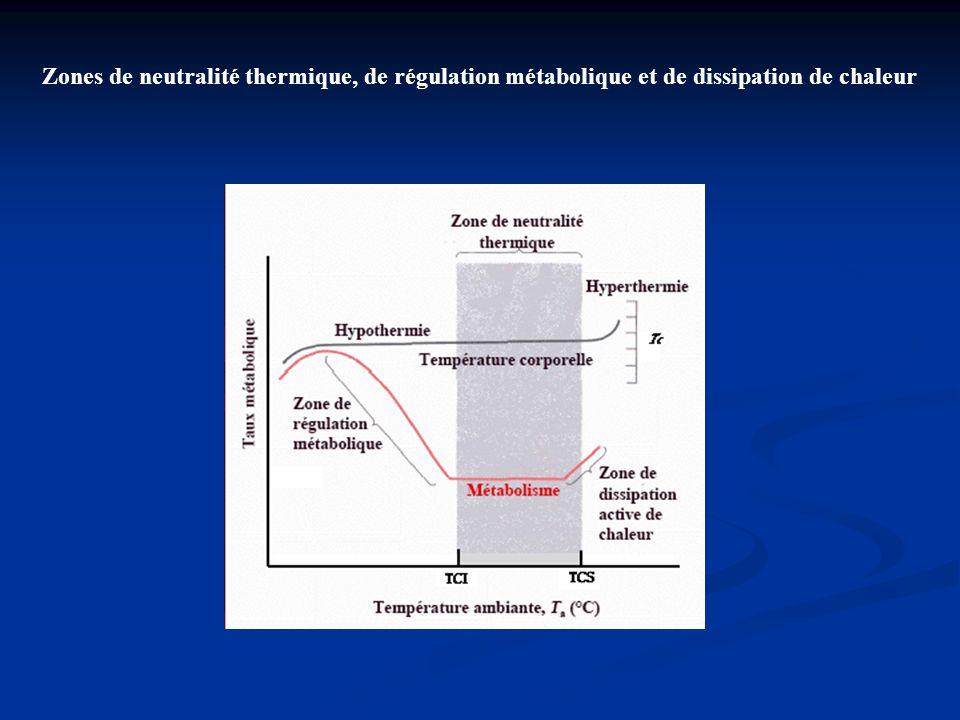 Zones de neutralité thermique, de régulation métabolique et de dissipation de chaleur