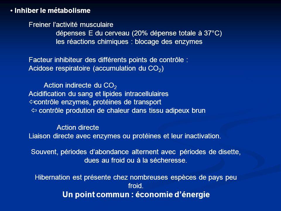Un point commun : économie d'énergie