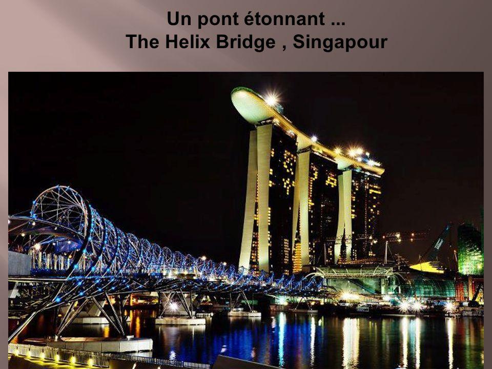 Un pont étonnant ... The Helix Bridge , Singapour