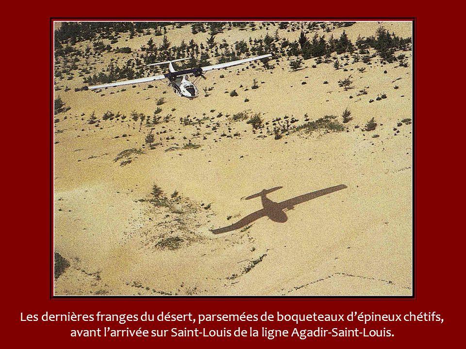 Les dernières franges du désert, parsemées de boqueteaux d'épineux chétifs, avant l'arrivée sur Saint-Louis de la ligne Agadir-Saint-Louis.