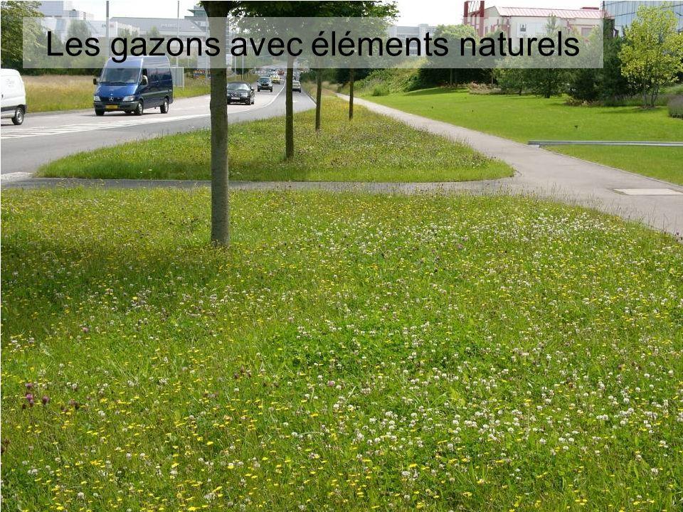 Les gazons avec éléments naturels