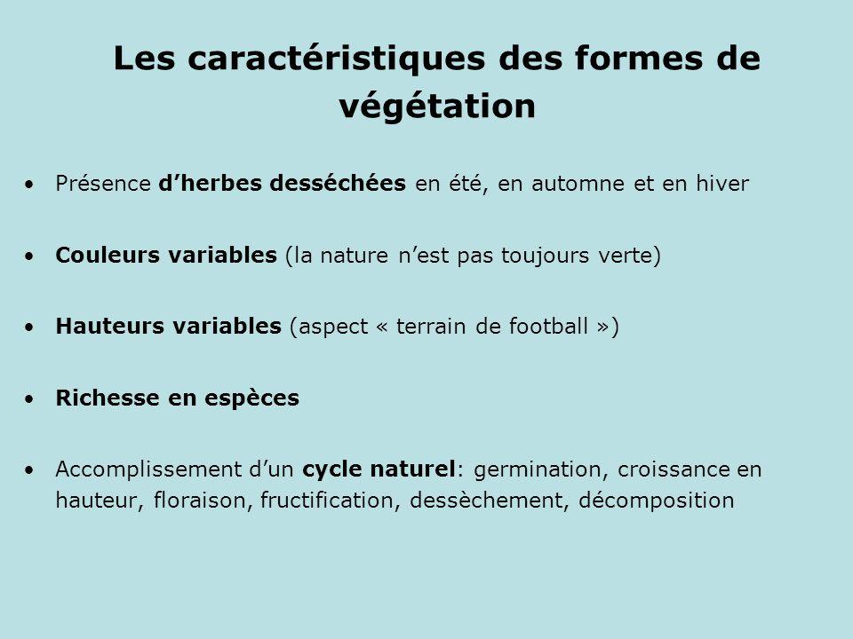 Les caractéristiques des formes de végétation