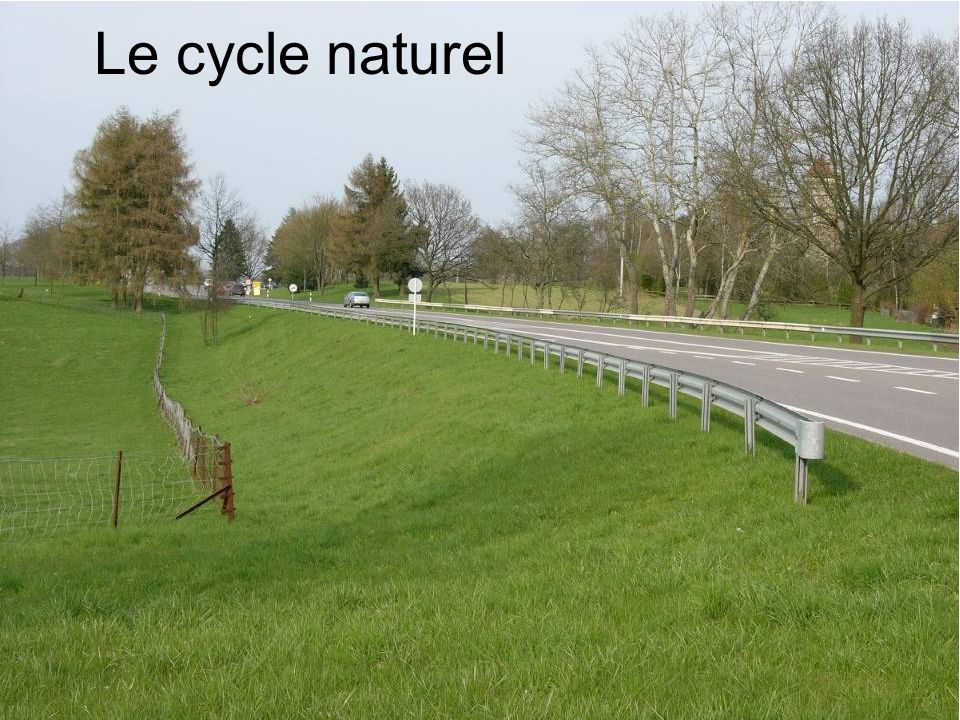 Le cycle naturel