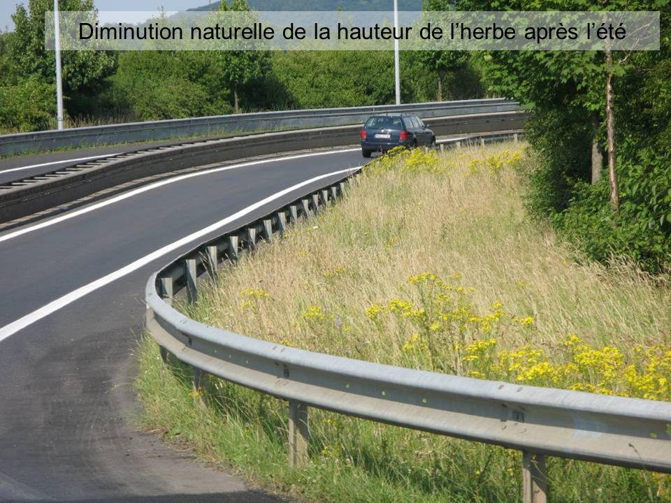 Diminution naturelle de la hauteur de l'herbe après l'été