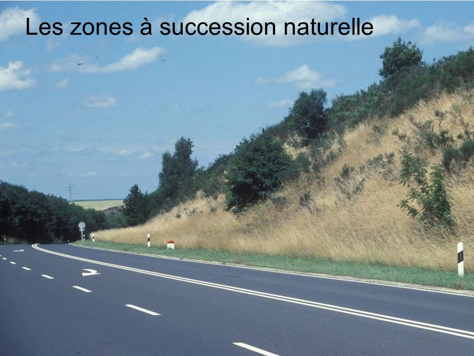 Les zones à succession naturelle