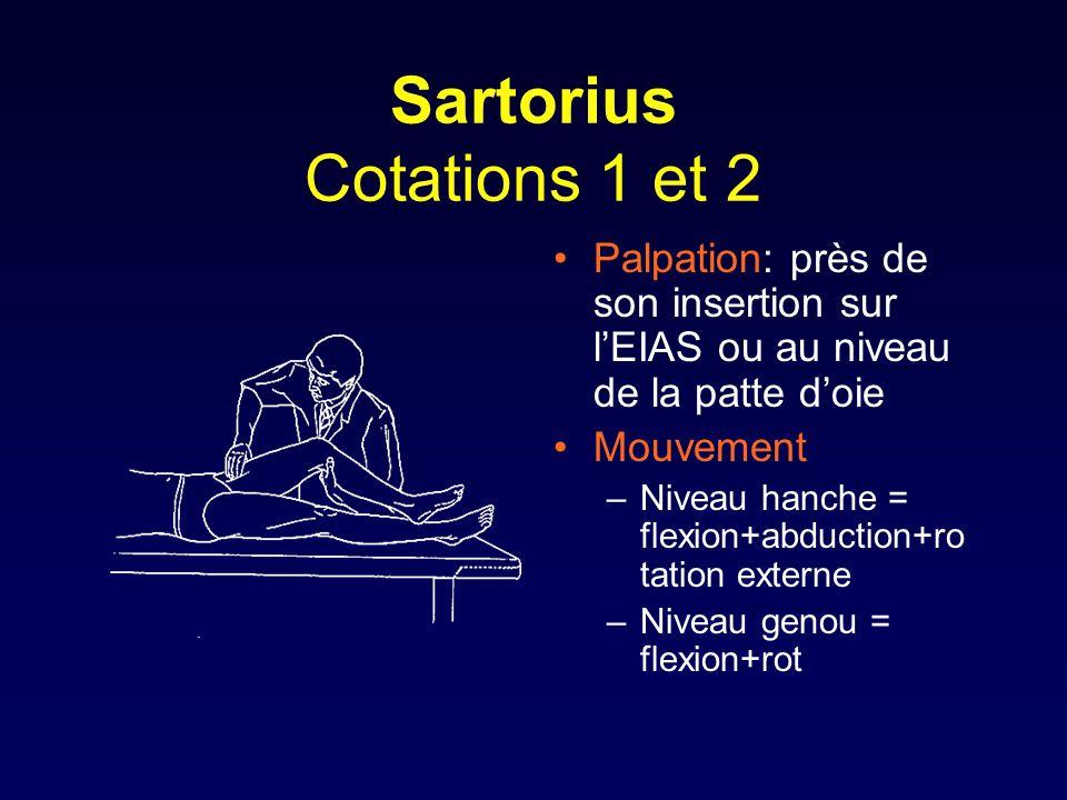 Sartorius Cotations 1 et 2