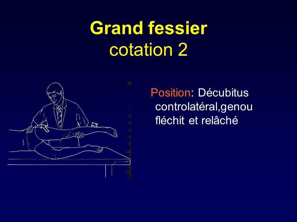 Grand fessier cotation 2