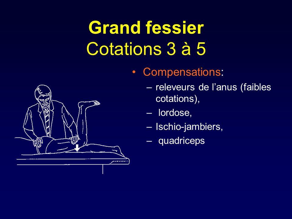 Grand fessier Cotations 3 à 5