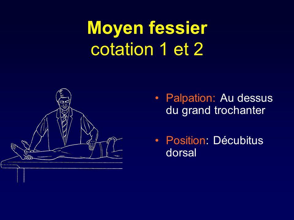 Moyen fessier cotation 1 et 2