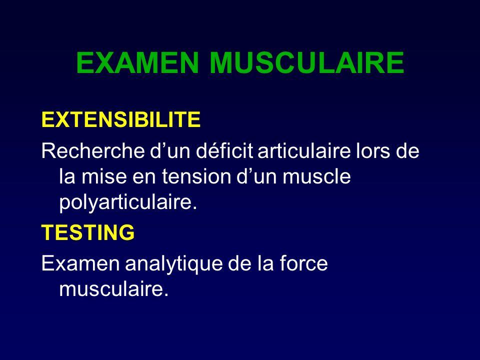 EXAMEN MUSCULAIRE EXTENSIBILITE