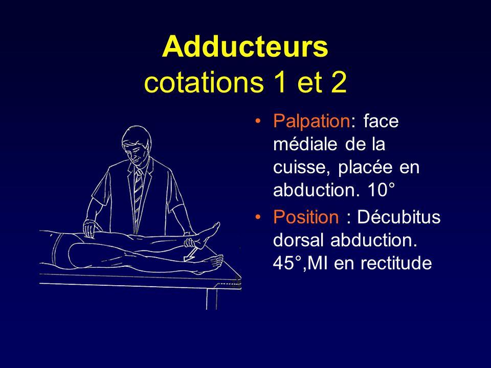 Adducteurs cotations 1 et 2