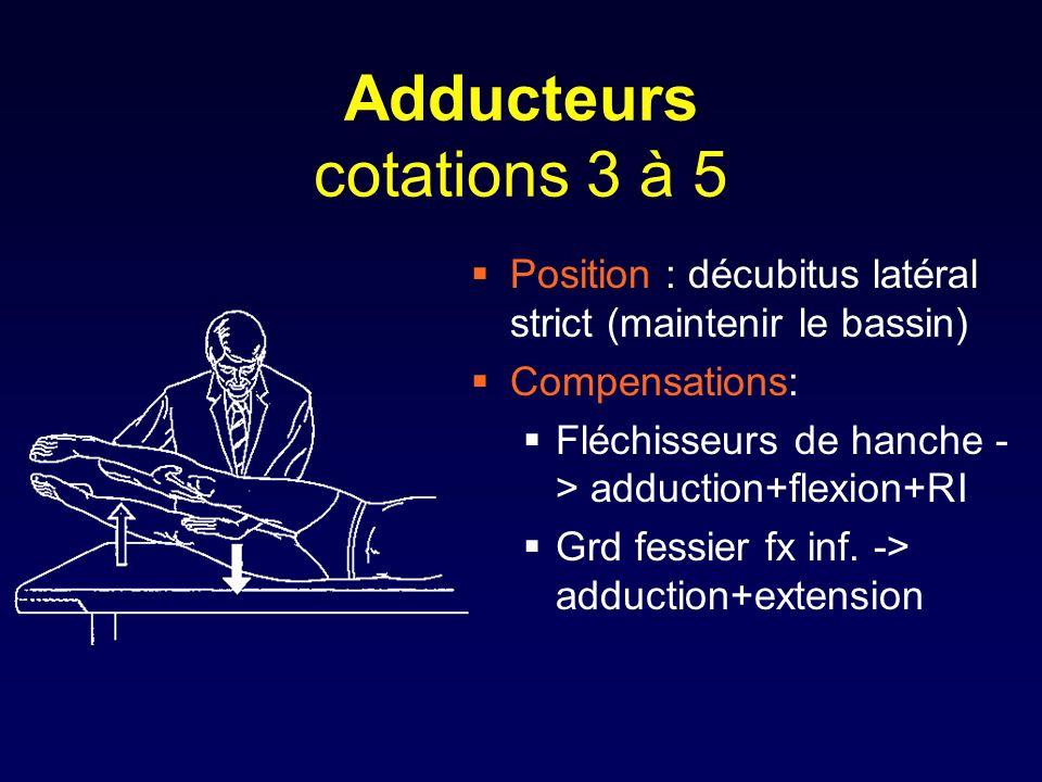 Adducteurs cotations 3 à 5