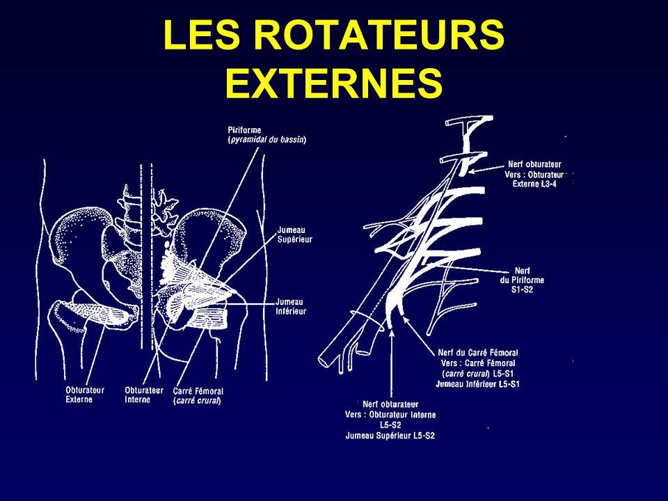 LES ROTATEURS EXTERNES