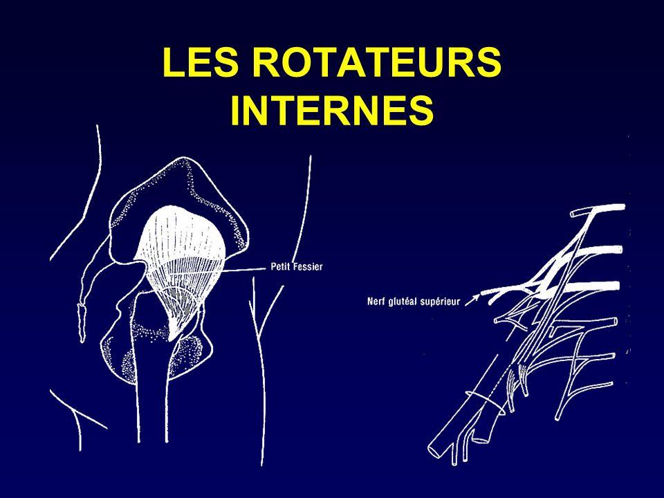 LES ROTATEURS INTERNES