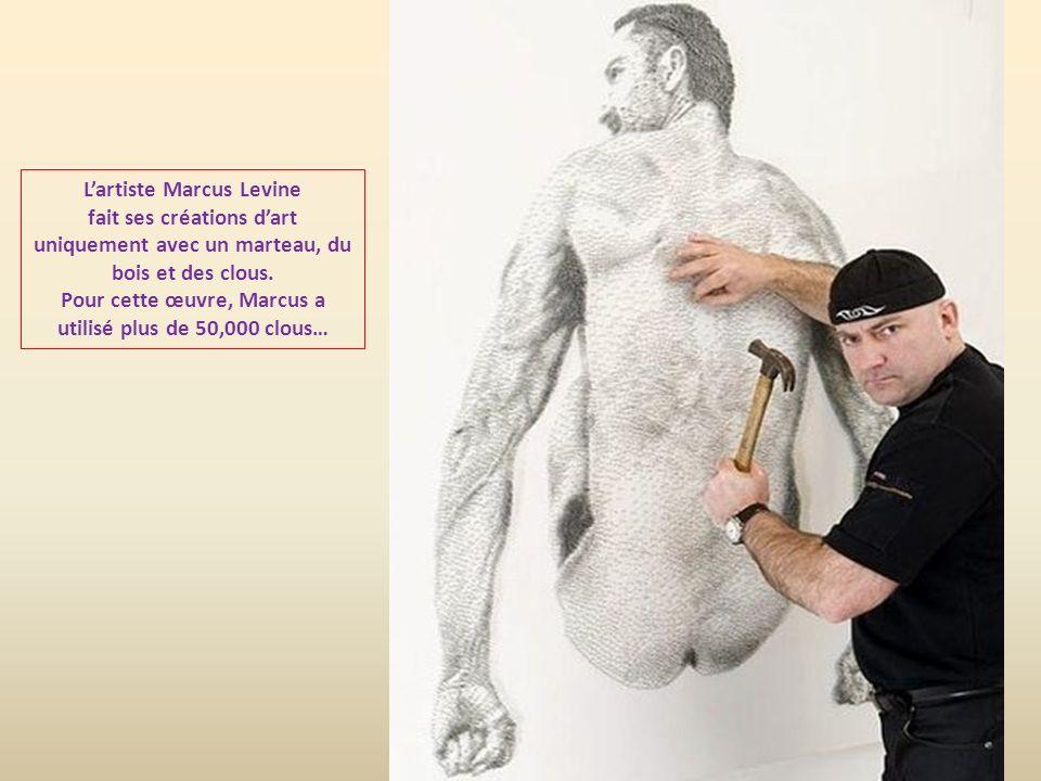 L'artiste Marcus Levine