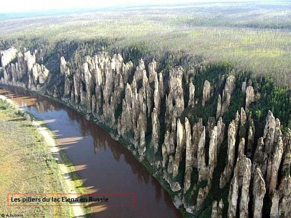 Les piliers du lac Elena en Russie