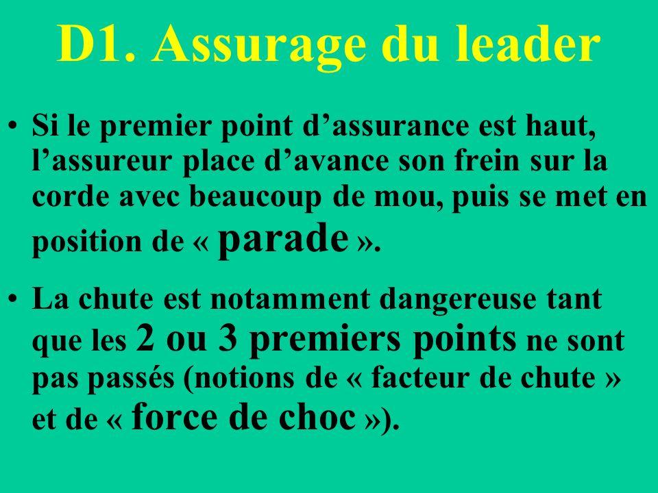 D1. Assurage du leader