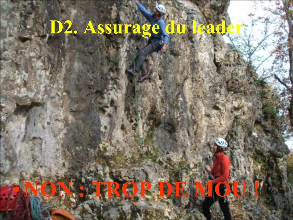 D2. Assurage du leader NON : TROP DE MOU !