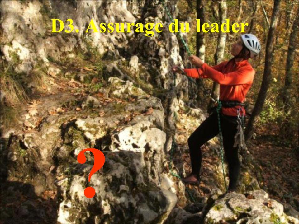 D3. Assurage du leader