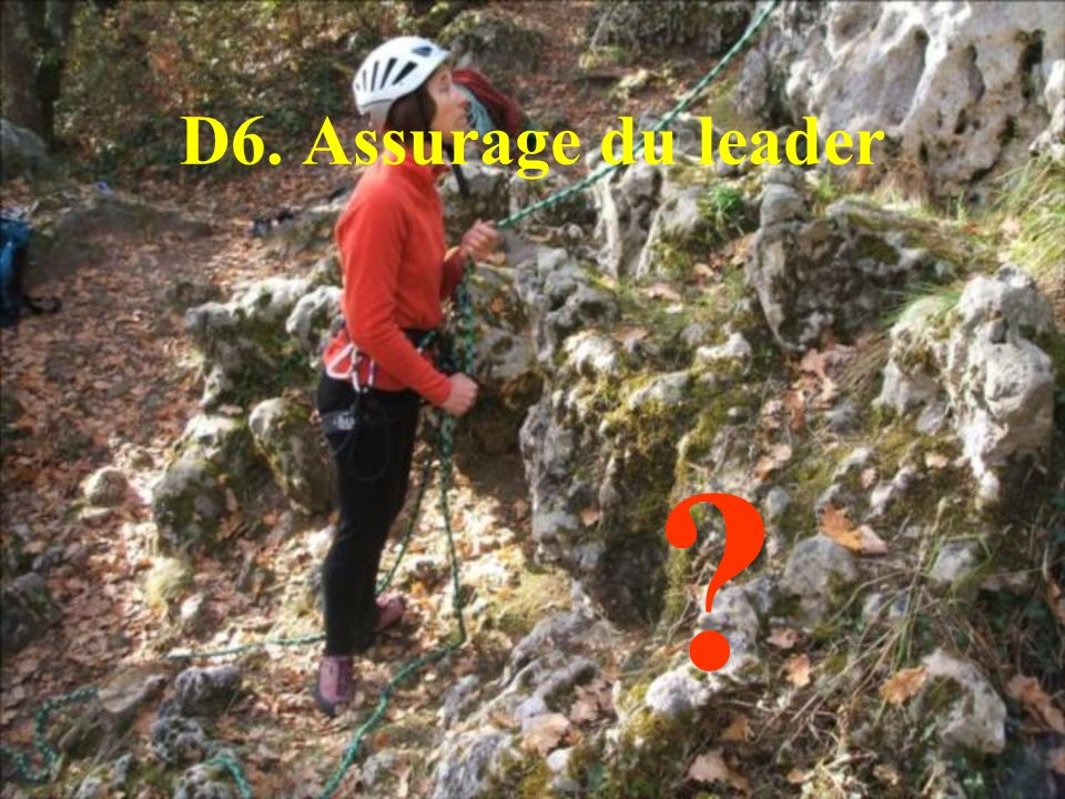 D6. Assurage du leader