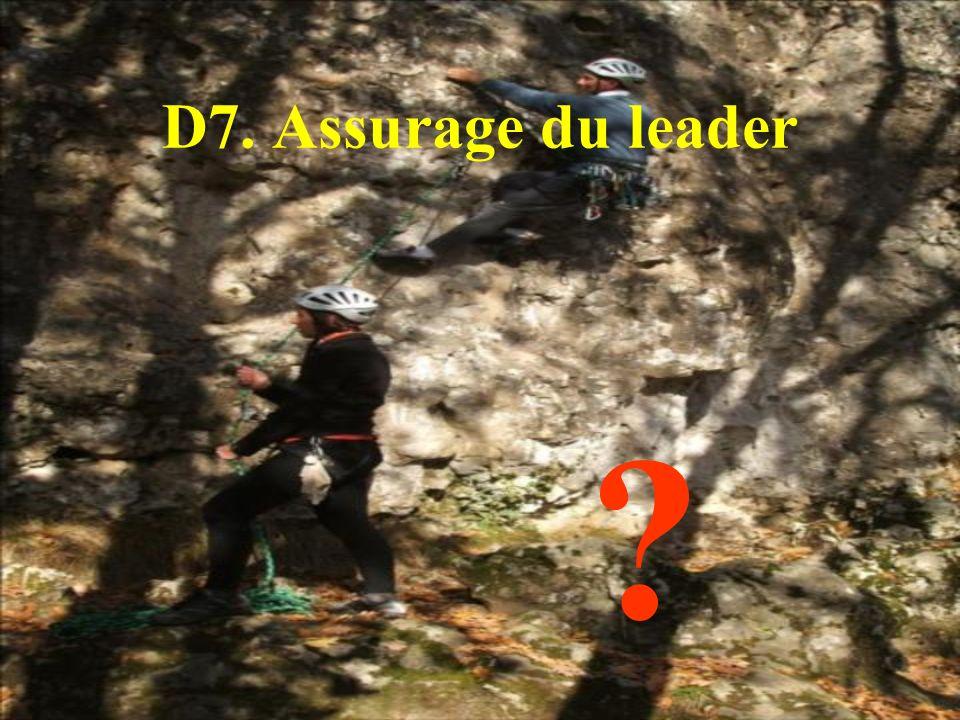 D7. Assurage du leader
