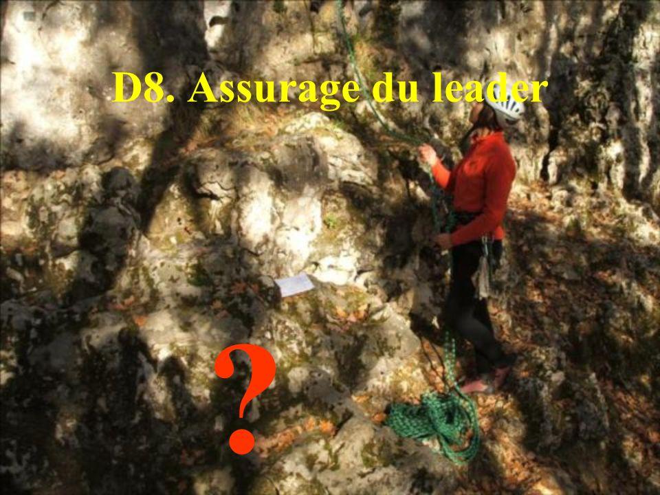 D8. Assurage du leader