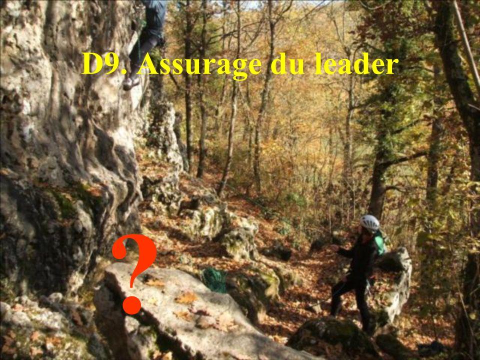 D9. Assurage du leader
