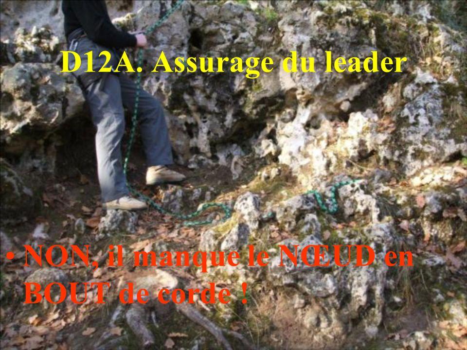 D12A. Assurage du leader NON, il manque le NŒUD en BOUT de corde !