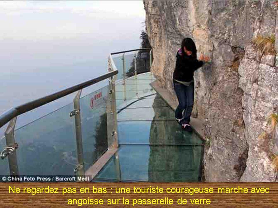 Ne regardez pas en bas : une touriste courageuse marche avec angoisse sur la passerelle de verre