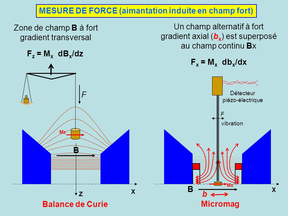 MESURE DE FORCE (aimantation induite en champ fort)