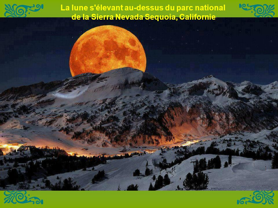 La lune s élevant au-dessus du parc national