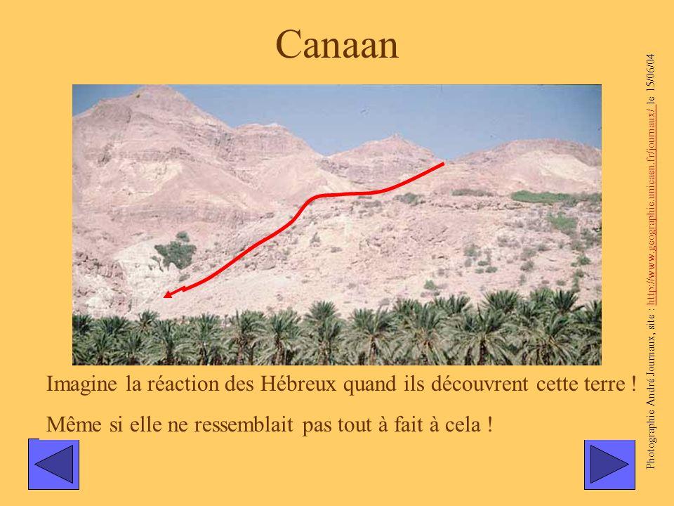 Canaan Photographie André Journaux, site : http://www.geographie.unicaen.fr/journaux/ le 15/06/04.