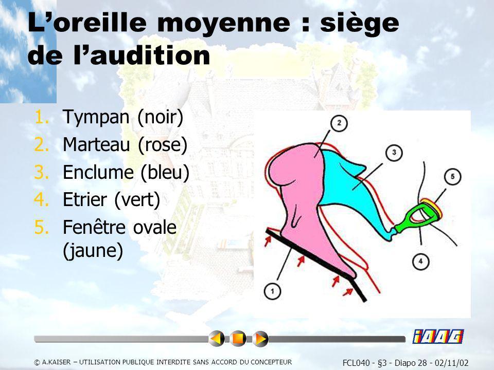 Atpl fcl040 performance humaine et limitations ppt video for Fenetre ovale oreille