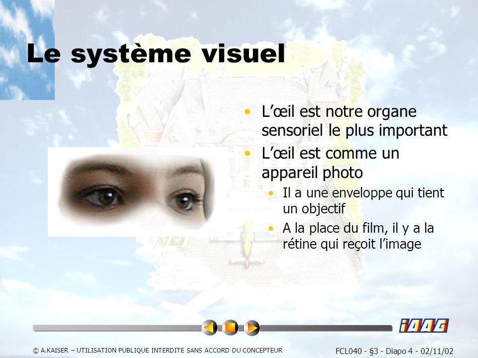 Le système visuel L'œil est notre organe sensoriel le plus important