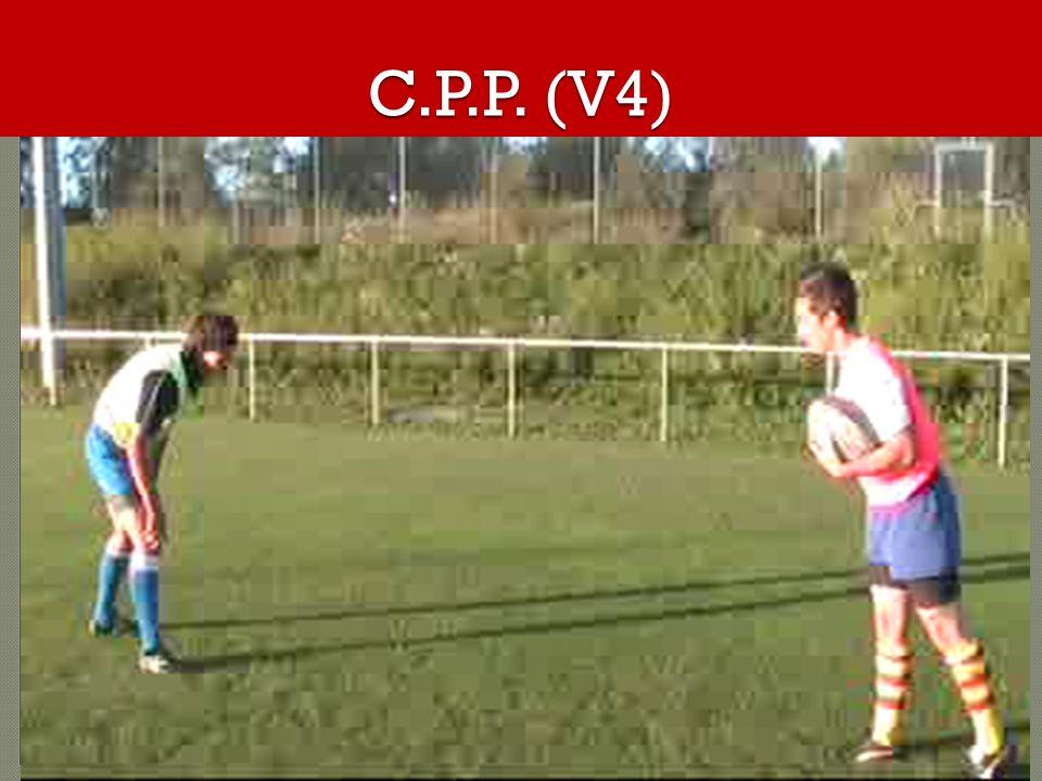 C.P.P. (V4)