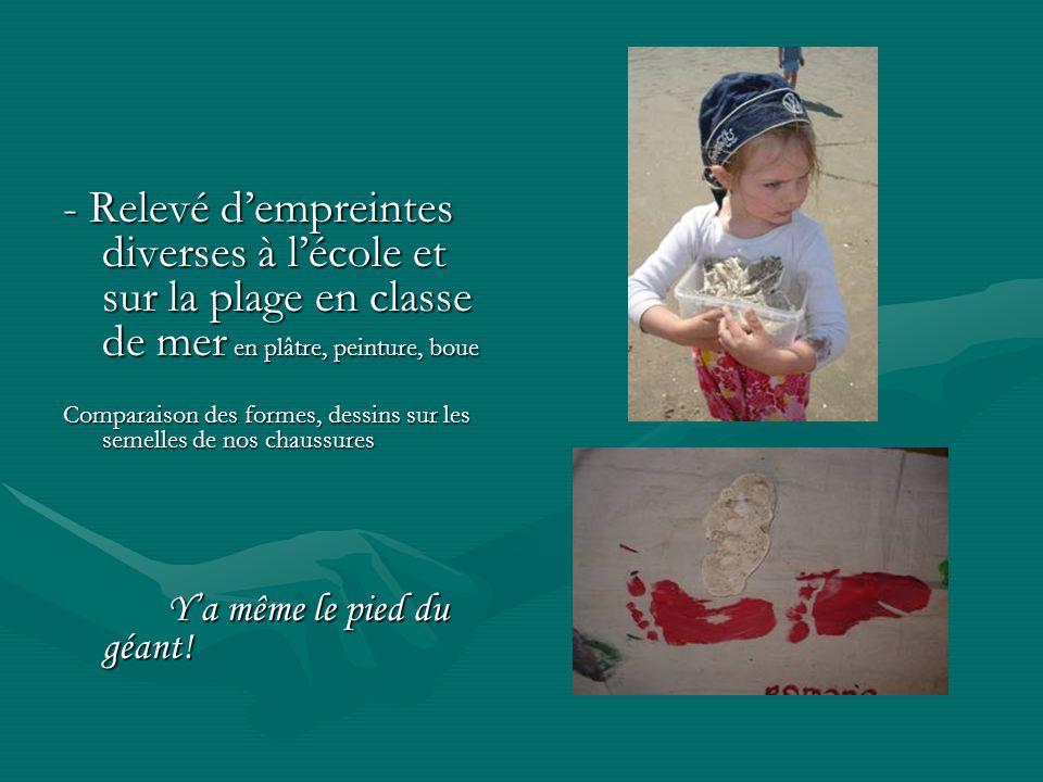 - Relevé d'empreintes diverses à l'école et sur la plage en classe de mer en plâtre, peinture, boue