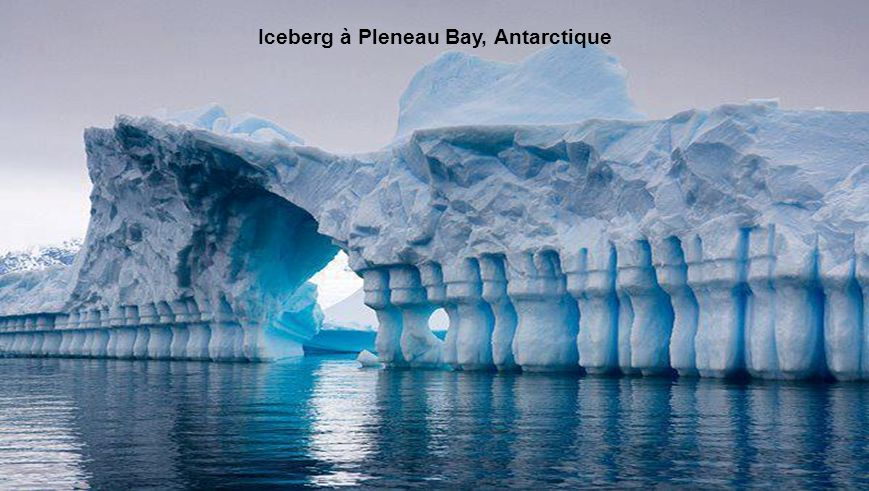 Iceberg à Pleneau Bay, Antarctique