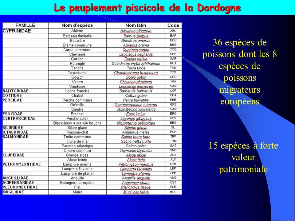 Le peuplement piscicole de la Dordogne