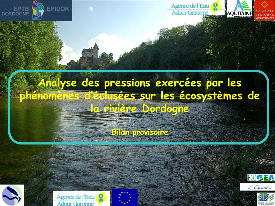 Analyse des pressions exercées par les phénomènes d'éclusées sur les écosystèmes de la rivière Dordogne