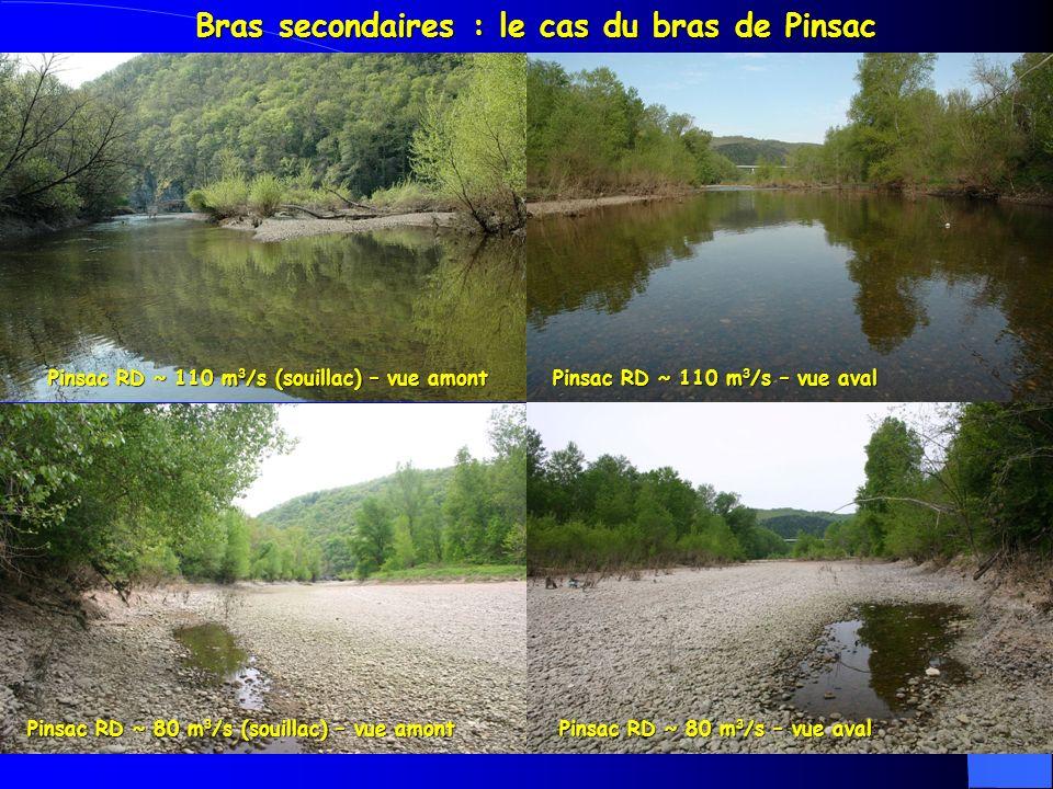Bras secondaires : le cas du bras de Pinsac