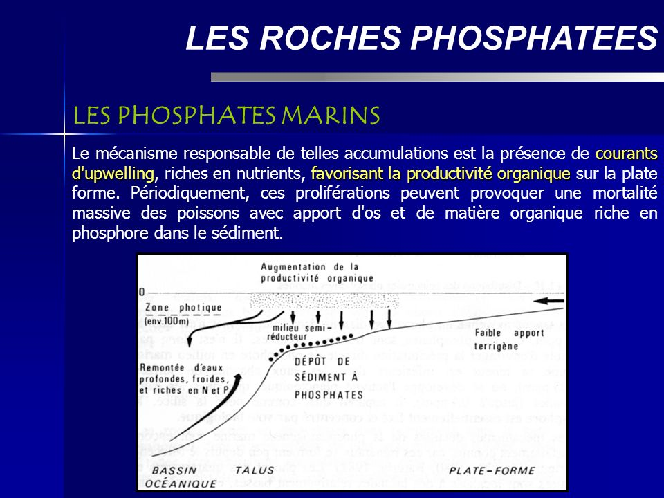 LES ROCHES PHOSPHATEES